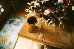 marisais:  Holiday Tea by lilymccune on Flickr.  oh hi teacup of mine (: