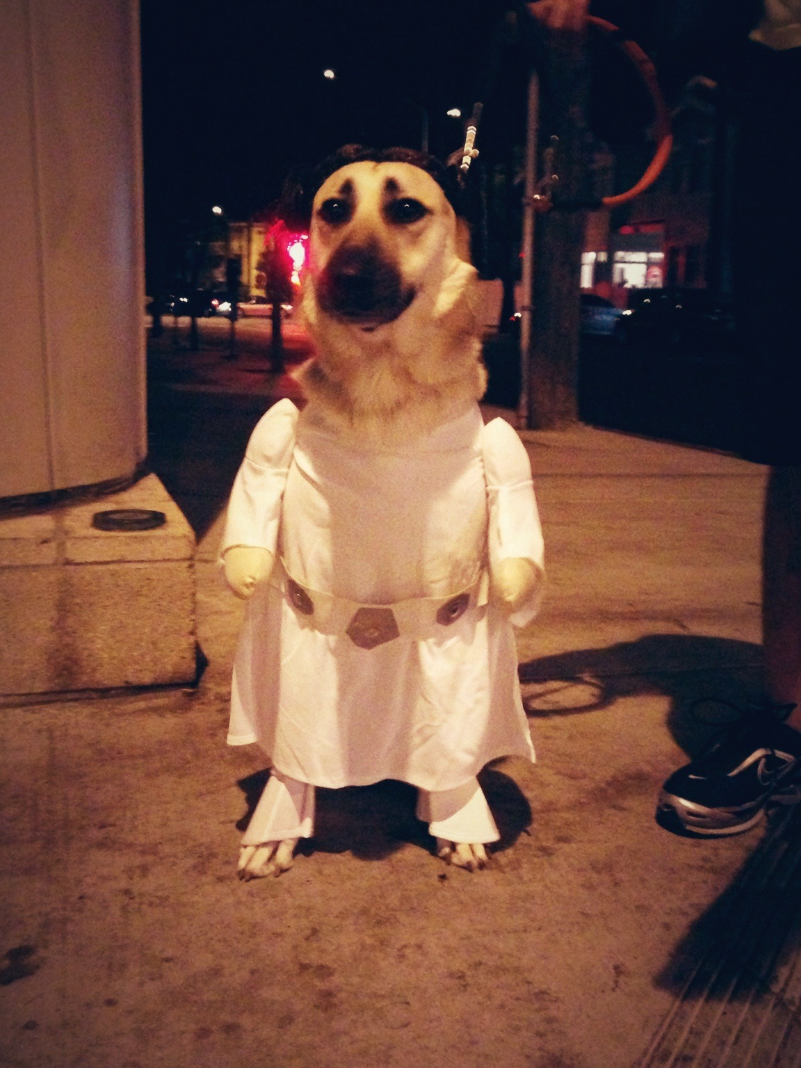 This has to be the BEST halloween costume ever!!  Ps: her real name is Leia! with Dario at South Santa Monica Beach – View on Path.