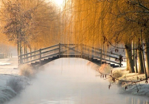 Frosty Morning, Aigrefuille, France photo via cheryl