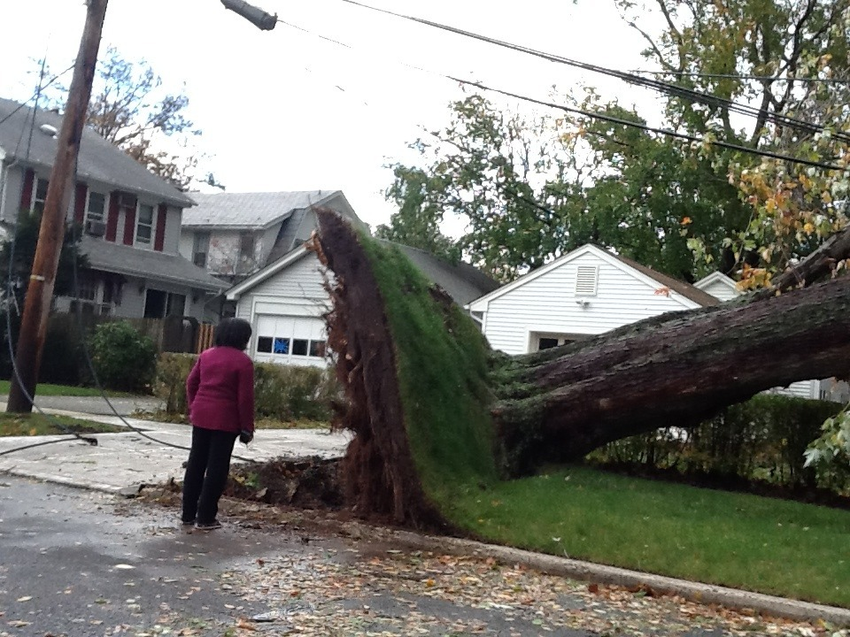 My mom surveying damage on our block… Thank the Lord my family/house is okay, but omg…New Jersey got hit hard… I don't understand how wind can do this…