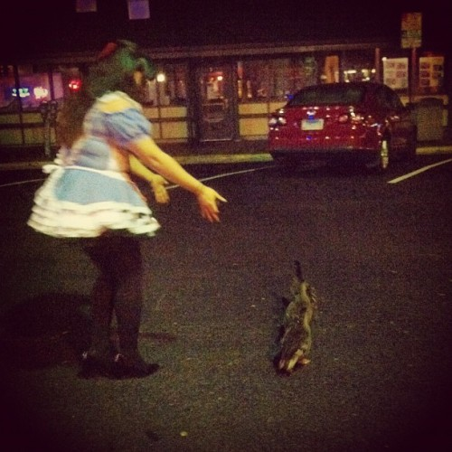Alice herding ducks @snappy_dragon  (at Federal House Bar & Grille)