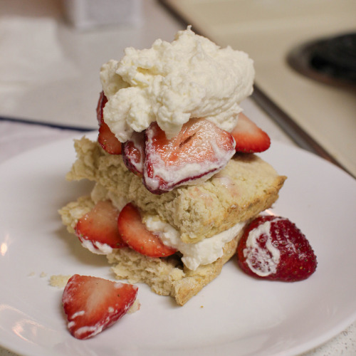 diet-killers:  Strawberry Short Cake (by huang.polly)