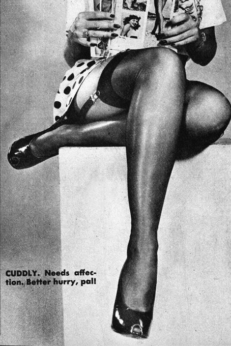 Legs reveal the woman type #2 (Cuddly), c.1950 detail from image found here vintage scans