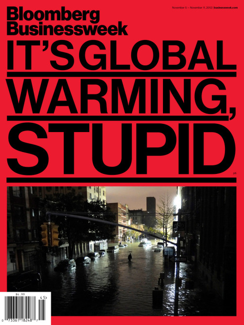 It's Global Warming, Stupid (by bizweekdesign)