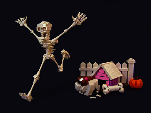 Bones? by Legohaulic on Flickr.