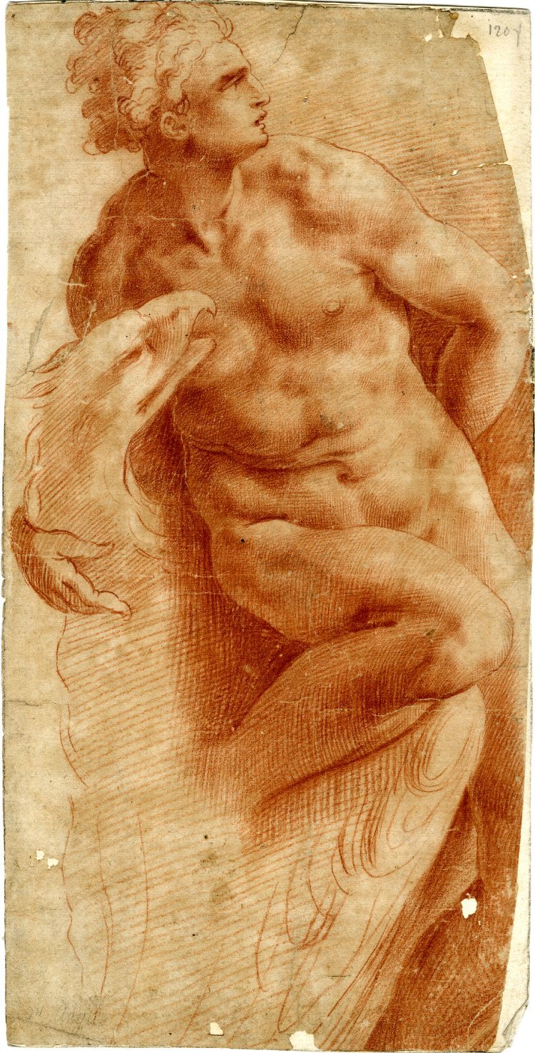 Drawn by Anonymous, 16th century, Ganymede, nude and looking to right, with his arm around the eagle, Red chalk