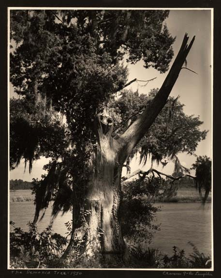 Clarence John Laughlin - The Demonic Tree, 1950. … via The Ogden Museum of Southern Art