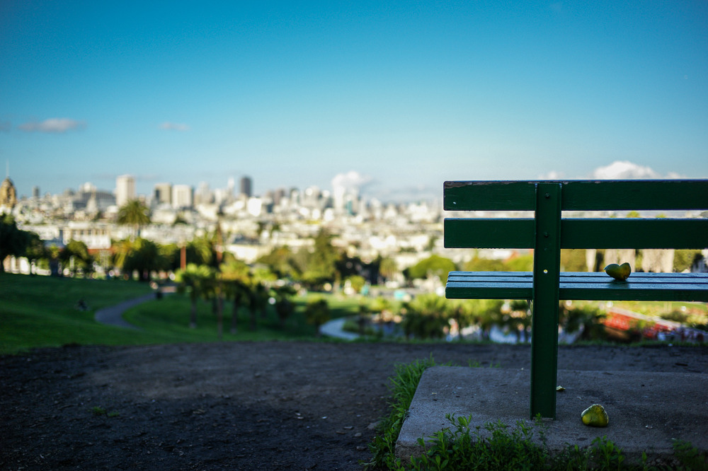 Park Bench. Dolores Park, San Francisco.
