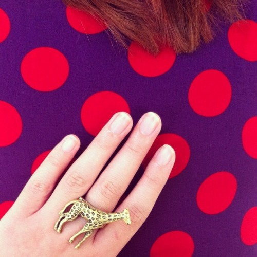 My short-necked giraffe ring, @tjanyunita's polka dot dress