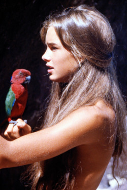 girlandthefox:  Brooke Shields in The Blue Lagoon (1980)