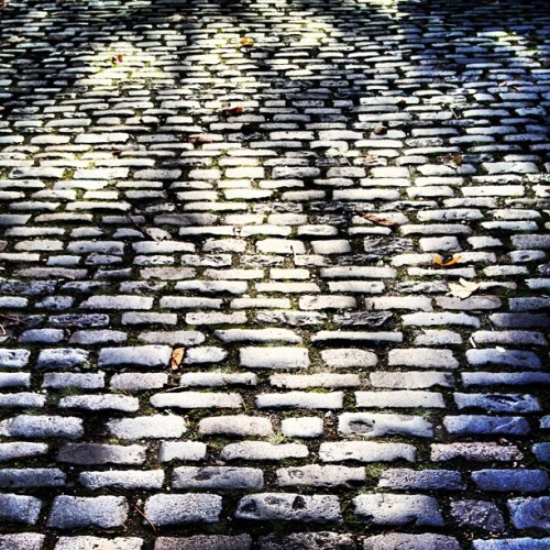 Cobbled • #street #road #surface #cobbles #listed #original #greenwich #southeastlondon #londondocklands #london #england #greatbritain #unitedkingdom #sunlight #perspective #distance #uneven #british #down #autumn #morning #november #2012 #lofi #lux #st #thest  (at St Alfege Park)