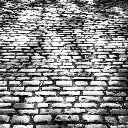 Cobbled mono • #street #road #surface #cobbles #listed #original #greenwich #southeastlondon #londondocklands #london #england #greatbritain #unitedkingdom #sunlight #perspective #distance #uneven #british #down #autumn #morning #november #2012 #blackandwhite #grey #mono #inkwell #lux #st #thest  (at St Alfege Park)