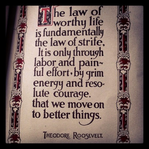 Real #truth from Theodore Roosevelt.   #wordstoliveby #quotes
