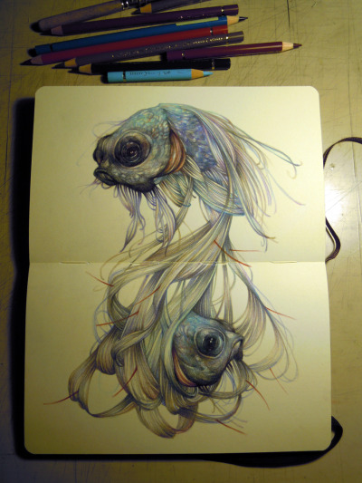 Pisces like me. marcomazzoni:  the hairy fish on moleskine