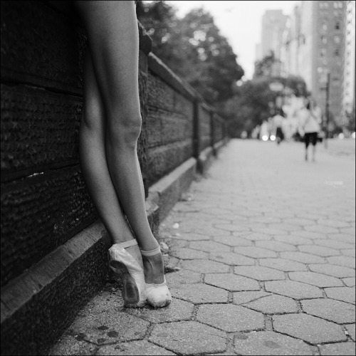 ballerinaproject:  Alys - Central Park Subscribe to the new Ballerina Project website Follow the Ballerina Project on Pinterest