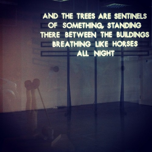 Saw This In A Closed Gallery… #Art #Sign #Quote #Saying #Nature #Trees #Horse #InstaQuote #InstaDaily #InstaHub #Message #Love