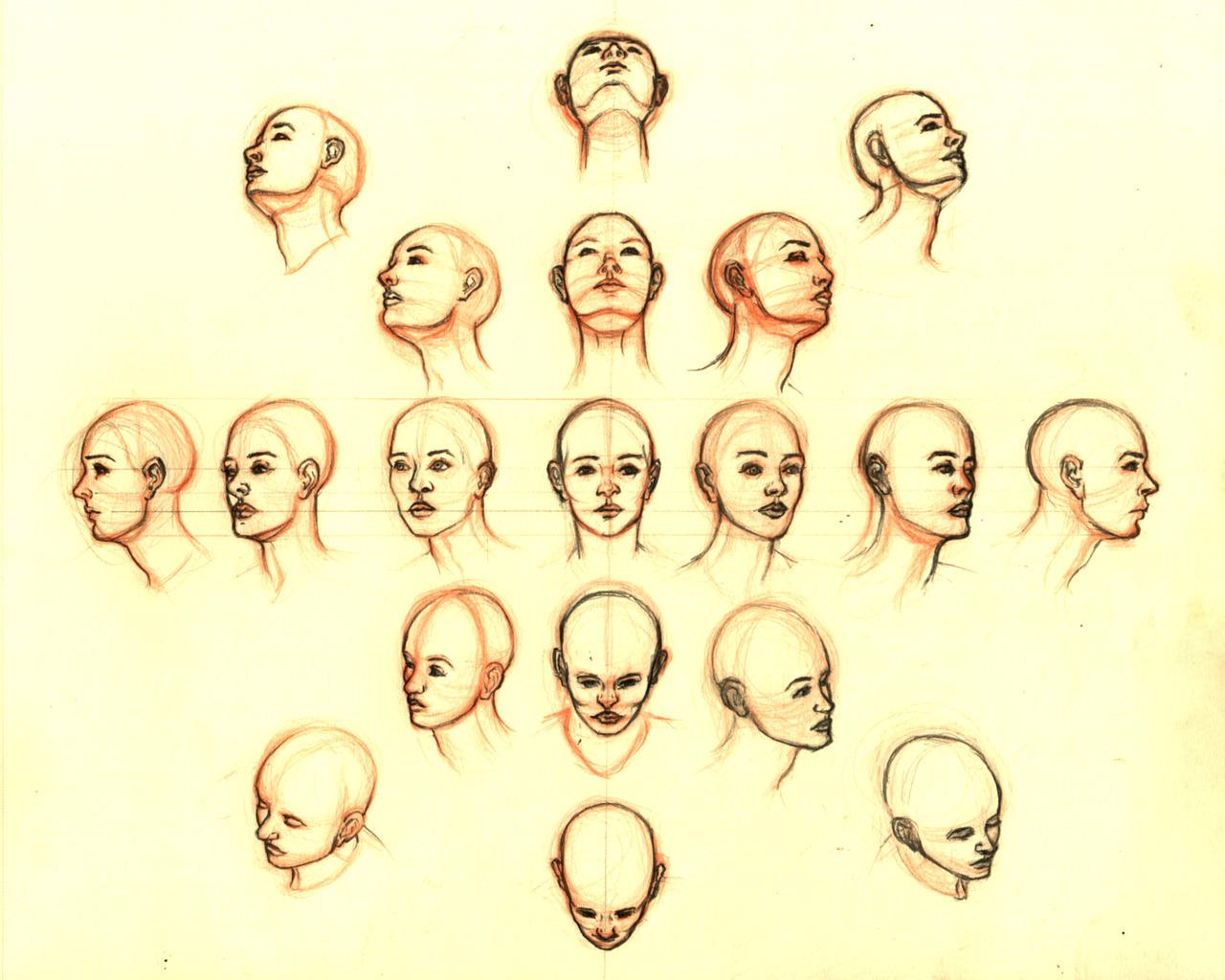 eatsleepdraw:  Heads by Em.