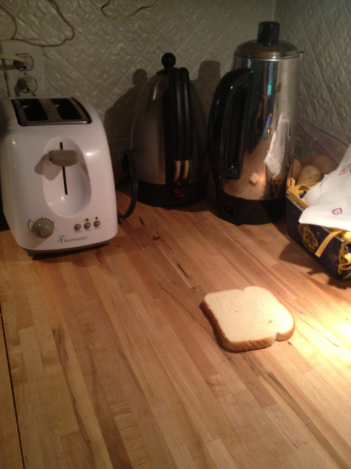 tonymohawk:  tonymohawk:  this piece of bread has been sitting on my counter all day and i feel so bad for it bc i don't know how someone could just leave it like that?? it's so close to the toaster yet so far away from its dreams  PLeaSE DONT DO THI S TO ME