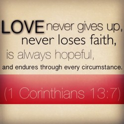 angelfrancia:  #Love never gives up, never loses #faith, is always hopeful, and endures through every circumstance. (1 Corinthians 13:7) #1Cor13 #truelove