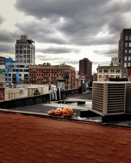 Halloween pumpkins under storm clouds after Hurricane Sandy. Williamsburg Bridge, New York City.  It's true. Power has been restored to Lower Manhattan east of Broadway from 14th Street to Canal Street which includes my neighborhood of the Lower East Side. I have never been so happy to see traffic lights working before! I got home, did a little dance with my boyfriend (my post-apocalyptic companion extraordinaire) and my cats (really, we all danced) and then went and took a very, very, very long HOT shower; the first in nearly 5 days.   I will write a real write-up of what the last 5 days was like and look for ways to help out those who lost way more than power and water. Tonight though, I am going to enjoy having lights on, having internet and having the ability to take a hot shower. My legs are numb from all the walking but man, is it good to be back to some semblance of normal.   Will be updating my Hurricane Sandy Flickr set  shortly with the remainder of photos I have from the last few days as well.  Thank you so much to everyone who sent messages, tweeted at me words of encouragement while I was being grim on my Twitter and left sweet comments. So much love ♥.  View the rest of the posts about Hurricane Sandy in NYC on this blog here:  Hurricane Sandy New York City  —-    View my store, email me, ask for help, or subscribe to the mailing list.