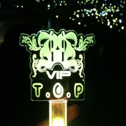 My glow stick #reppinmyman #bigbangalivetour2012 #topsfirstwifey  (at Honda Center)