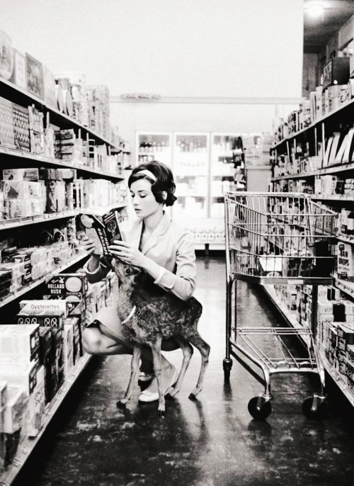 Audrey Hepburn shopping with her pet deer Ip in Beverly Hills, CA, 1958
