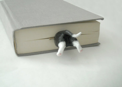 (via Your Cat in the Book Unique Art Bookmark by whitehouseblackcat)