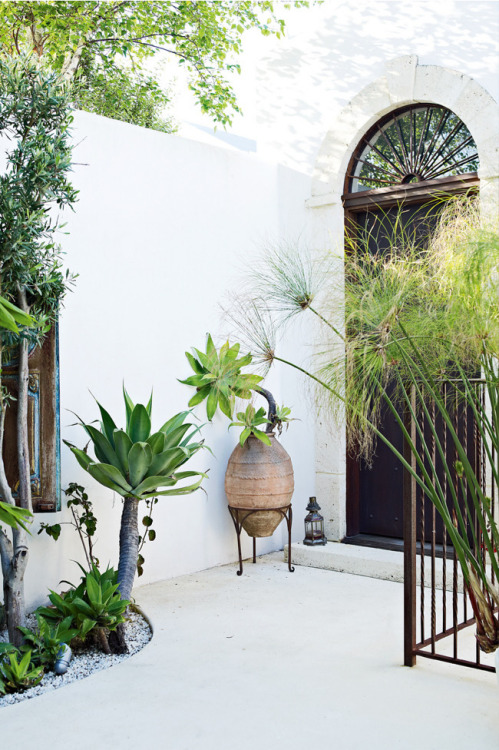 organic-kid:  li-velyy:  vertexx:  I love this courtyard  amazing  organic blog.