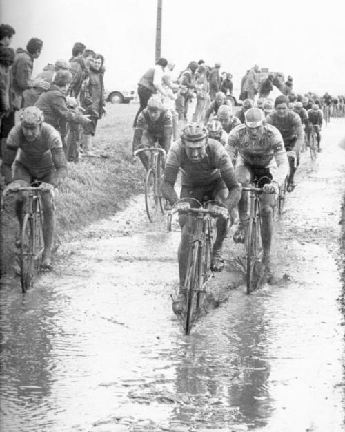 (via CYCLING ART BLOG: Paris Roubaix 1985 Muddy Marvelous)