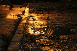 Last Night ~Bonfire ~Puddle ~MyPhotography
