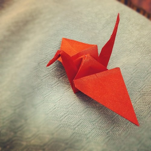 Soon I shall be an origami master. (It's a crane, OK? The bird. Not the heavy machinery. Honest.) (at Queen Victoria Hospital)