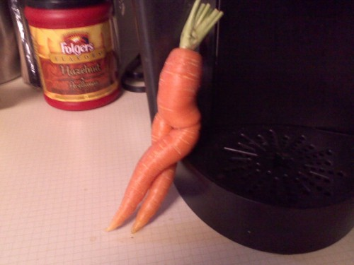 lightofmeridian:  MY MOM BROUGHT THIS FUCKIGN CARROT HOME FROM THE FARMERS MARKET ADN IM FUGCKIN SOOBBING I NCA NT