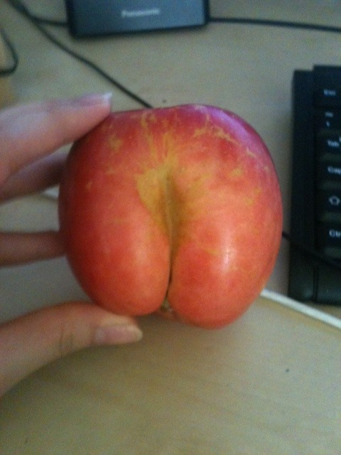 supatomic:  LOOK AT THIS BUTT APPLE I FOUND IT GROCERY SHOPPING AND I BOUGHT IT THIS APPLE WAS MEANT TO BE BOUGHT BY ME