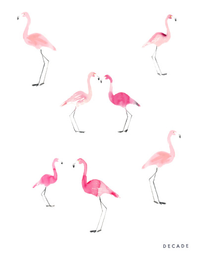 decadediary:  Flamingos for L.S.D., turned into a pattern Blog Post: What kind of bird are you  « Illustration by Decade Diary