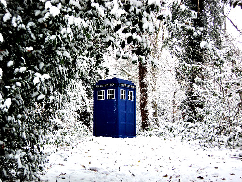 winterinthetardis:   #I WANT TO WALK THROUGH A SNOWY FOREST AND SEE THIS OKAY