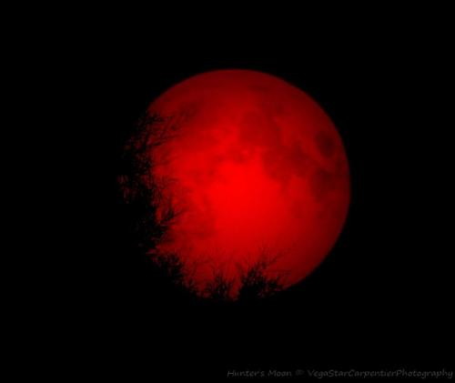 ihatepeacocks:  A menacing blood red Hunter's Moon was captured by astrophotographer VegaStar Carpentier from Paris, France on Oct. 30, 2012.