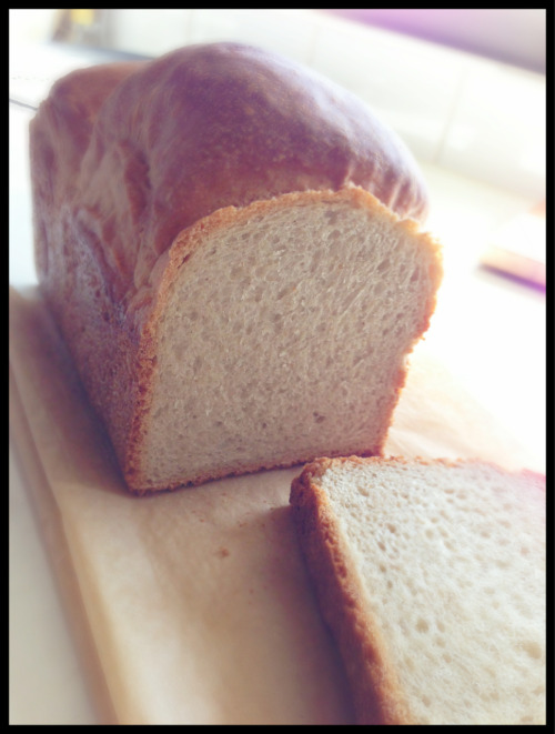 Home baked whole wheat bread!