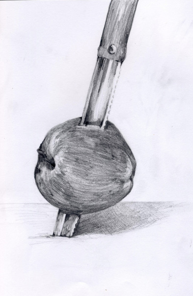 An old drawing of an apple + knife.