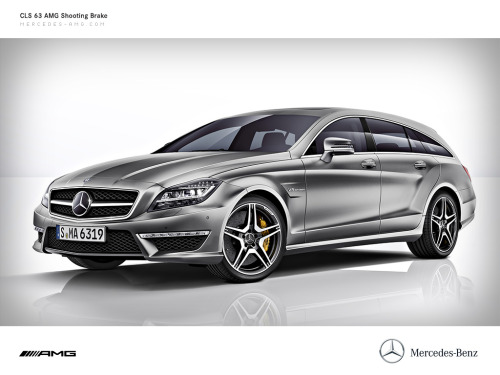 Mercedes CLS63 AMG Shooting Brake  You'd be crazy to buy a Porsche Panamera over this, it seems Mercedes actually thought about a good design for a estate wagon. Whereas the Panamera (like every other Porsche) seems to be an lazy extension of the 911 design.