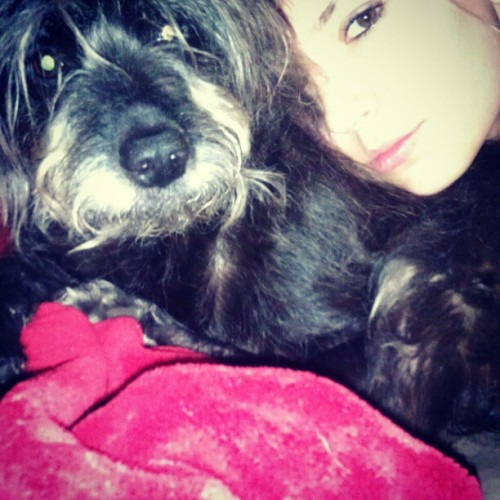 #dog #stormy #cuddle I love my dog