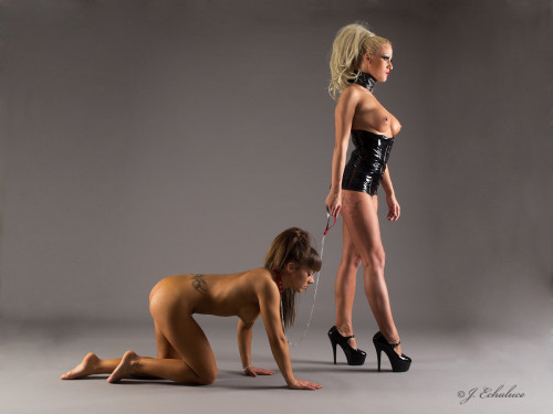&#8220The difference between a Registered Mistress and a Domestic Animal? They are both connected by the same leash, but only one of them knows it is Her right to lead rather than be led.&#8221 —Maria Gutierrez, &#8220The Rise of Hundehersteller Industries, vol. I&#8221