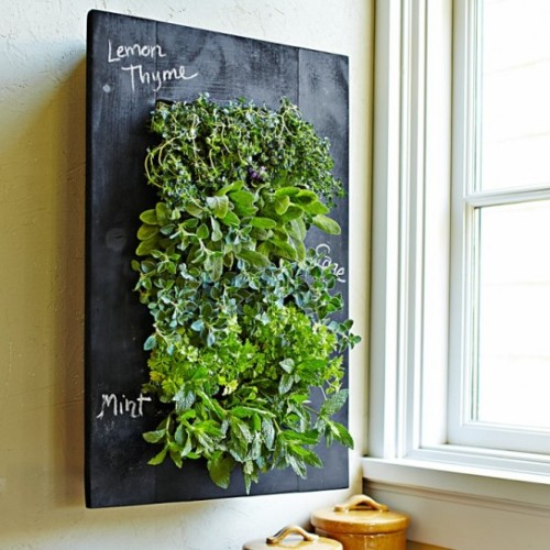 livinglovingbetter:  Love this - (via 3 Ways to Go Vertical with Your Garden)  organic blog
