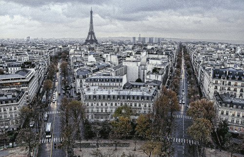 parisbeautiful:  Automne à Paris by Broilerkeule on Flickr.     Me leva…..