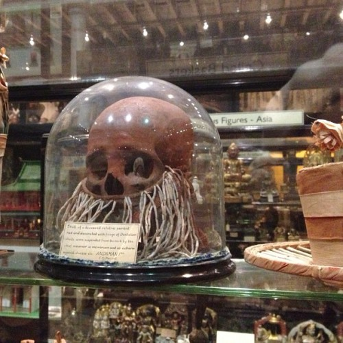 Fab skull thing, Pitt Rivers Museum #Oxford