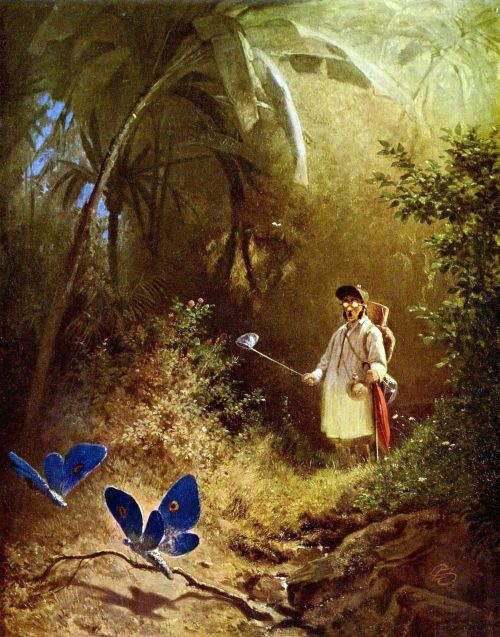 muirgilsdream:  Carl Spitzweg, Butterfly Hunter.