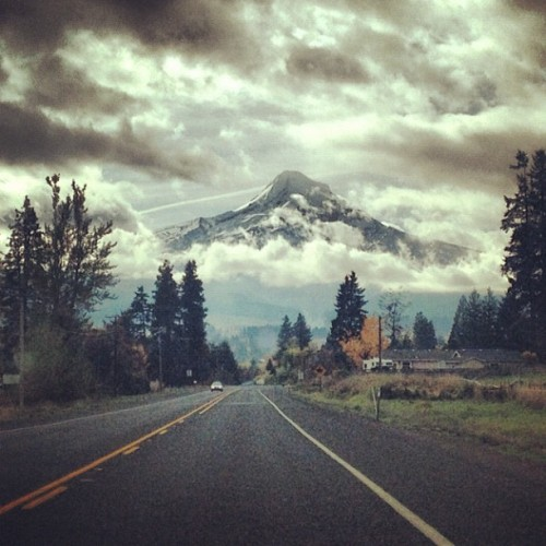 fortheloveofmegan:  I need a road trip.
