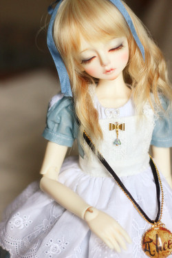 dollsociety:  Luts