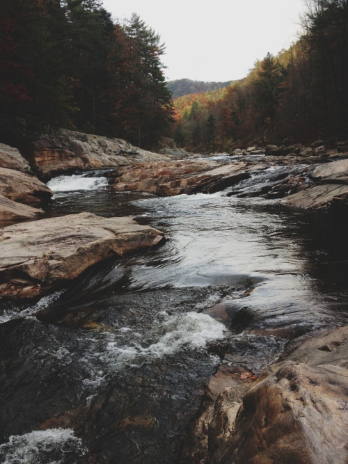 ashgatsby:  Wilson's Creek, North Carolina