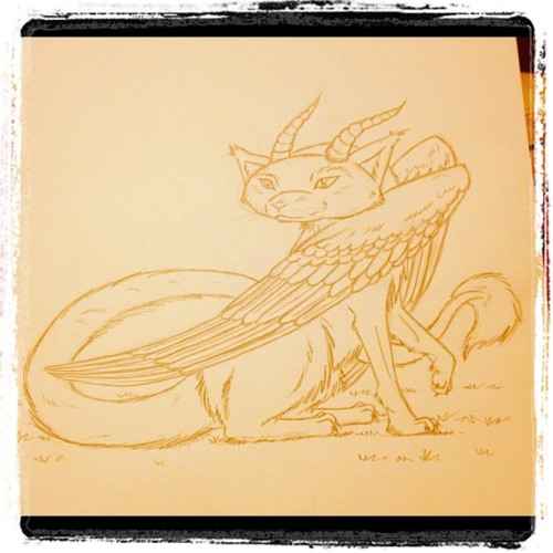 Watching How To Train Your Dragon & came up with my very own. DragonCat! #art