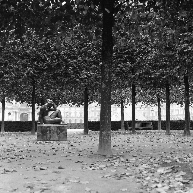 Jardin du Carrousel on Flickr.Via Flickr: Paris.  Rolleiflex T | Ilford Delta 400